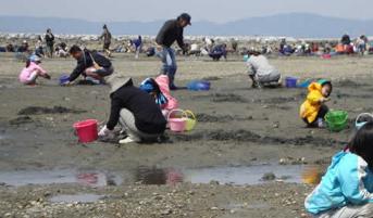 宮崎県の潮干狩りおすすめスポットは?潮の満ち引きサイトもチェック!