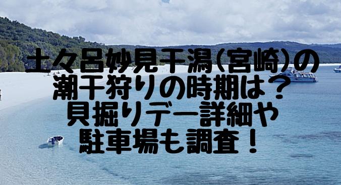土々呂妙見干潟(宮崎)の潮干狩りの時期は?貝掘りデー詳細や駐車場も調査!