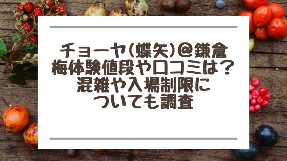 チョーヤ(蝶矢)@鎌倉|梅体験値段や口コミは?混雑や入場制限についても調査