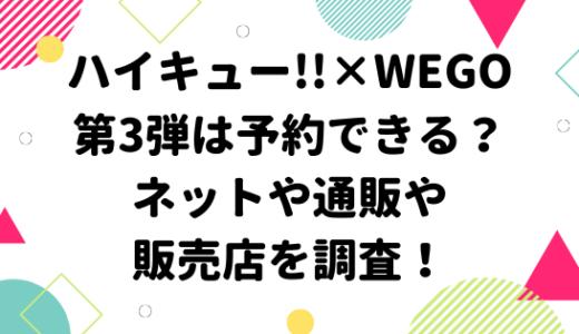 ハイキュー!!×WEGO第3弾は予約できる?ネットや通販や販売店を調査!
