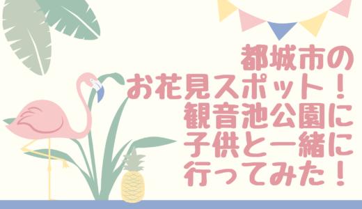 都城市のお花見スポット観音池公園にこどもと行ってみた!桜の見ごろはいつ?