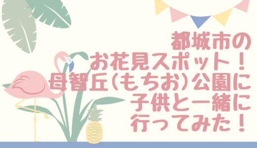 都城市のお花見スポット母智丘(もちお)公園にこどもと行ってみた!桜の見ごろはいつ?