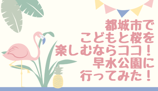都城市でこどもと桜を楽しむならココ!早水公園に行ってみた!桜の見ごろは?
